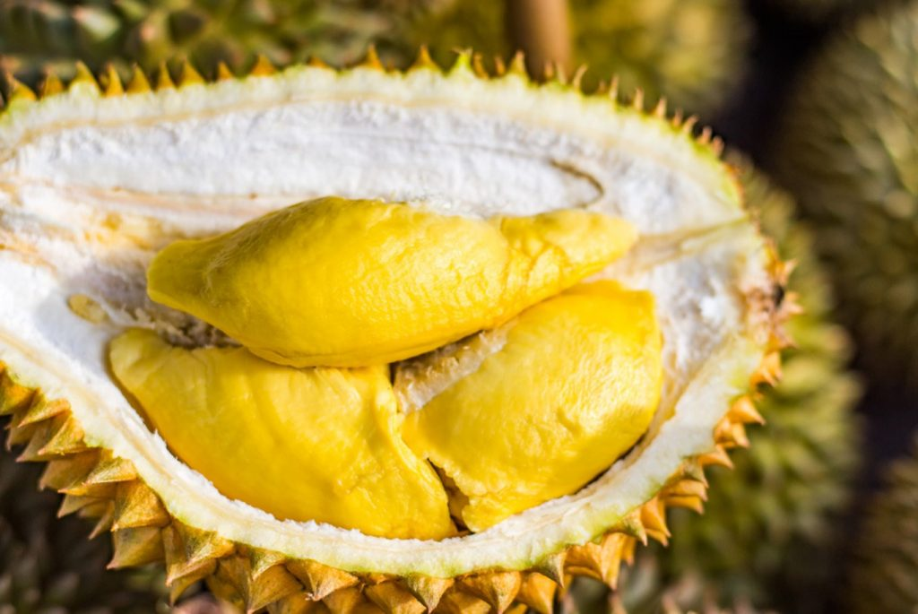 Benefits and Efficacy of Durian Fruit
