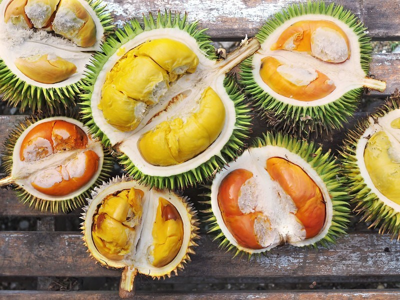 Various type and Kind of Durians